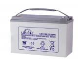 38-250AH  Leoch power battery